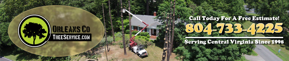 Orleans Co. Tree Service: Proudly Serving Richmond, Virginia Chesterfield, VA Petersburg, VA Henrico, VA Since 1998.